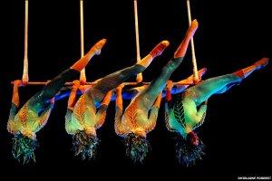Cirque Du Soleil performers