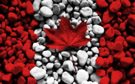 Canadian flag on rocks